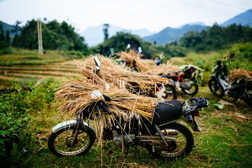 motorbike travel in vietnam